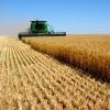 Омские аграрии получили около 100 млн рублей  на сезонно-полевые работы с начала 2015 года