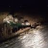 В Омской области пострадали 3 пассажира УАЗа
