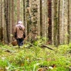 В Омской области из леса больше суток не возвращается 81-летняя женщина