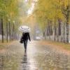Холодная осень пришла в Омскую область
