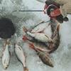 Омские рыбаки определили лучших в ловле на мормышку