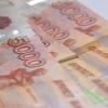 Стало известно, сколько заработало руководство омской полиции за прошлый год