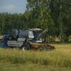 В Омской области наступил год плодородия