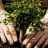 Омской области очистят поселок Степной от загрязнений