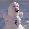 В Омске пройдет праздник в честь открытия зимнего сезона «Зимушка на Зеленом острове»