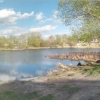 Жители Старого Кировска попросили мэра Омска разобраться с озером