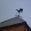 Весеннее тепло в Омской области может испортить дождь и ветер