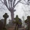 На омском кладбище сельчане нашли висящий на дереве труп пенсионера