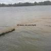 Канализационный приток Иртыша: омич шокирован грязными стоками