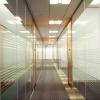 Стеклянные офисные перегородки из Реалстекла
