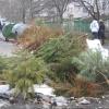 МЧС просит омчией скорее избавиться от елки