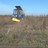В Омске уничтожили более одного гектара наркосодержащего растения