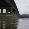 Омичам посоветовали не ходить толпой и не стоять долго на Ленинградском мосту