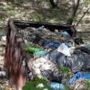 Омичей зовут на уборку набережной и экопикник