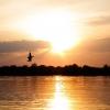 В Омской области рыбак остался без лодки на острове посреди Иртыша