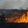 В Омской области введен особый противопожарный режим до 10 июня