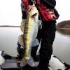 Омичи поймали в Иртыше четырехкилограммового судака