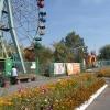 В Омске прокуратура отбирает землю у аквапарка в парке 30-летия ВЛКСМ
