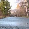 В Омской области ограничили въезд в Чернолучье
