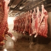 Мясо пропустили через границу
