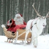 Деду Морозу построят космическую усадьбу
