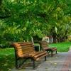 На Московке-2 появится новый парк