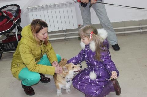 Кокорин выделил помещение омскому центру зоотерапии «Дверь влето»