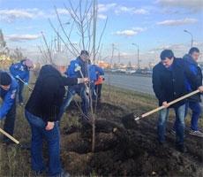 """Стартовал проект """"300 тысяч деревьев к 300-летнему юбилею Омска"""""""