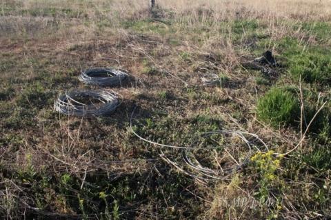 Под Омском двое рецидивистов на Приоре украли 2 километра кабеля
