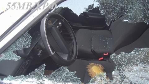 Полицейская собака помогла найти омича, разбившего стекла 12 машин