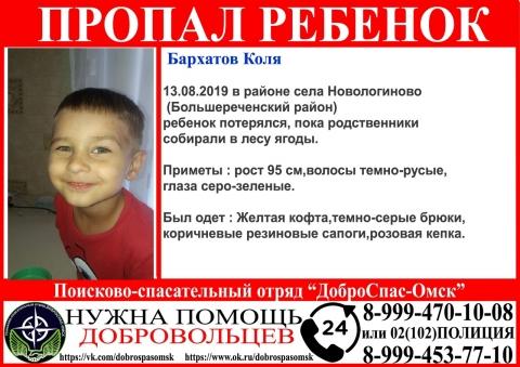 В лесу Омской области пропал 3-летний мальчик