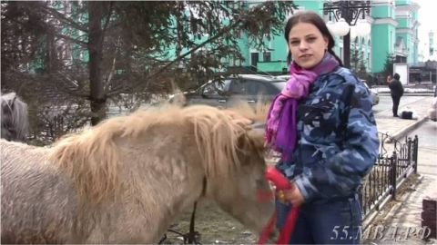 Омичке вернули пони, которые от нее сбежали