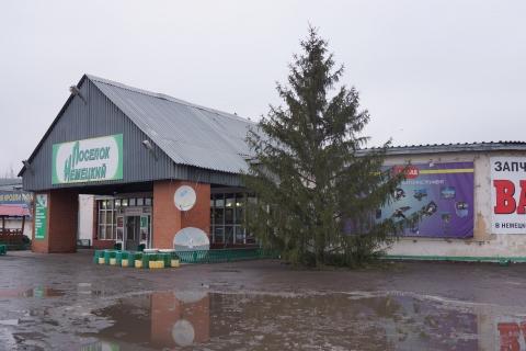 Первую живую елку в Омске установили в Старом Кировске
