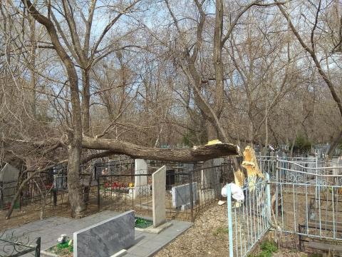 На омском кладбище упавшие деревья повредили надгробия