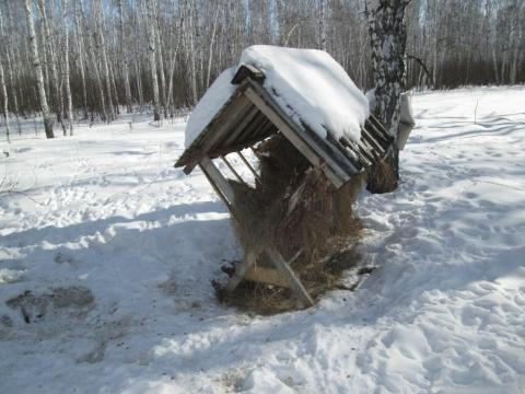 Заказники Омской области готовы к зимнему сезону
