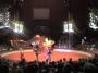 Прокурорам не понравилось в цирке