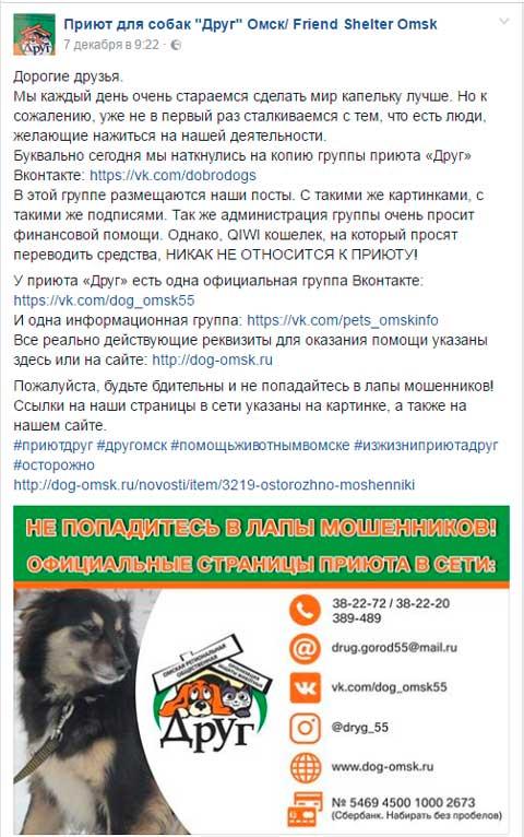 Мошенники пытались нажиться на бездомных животных Омска