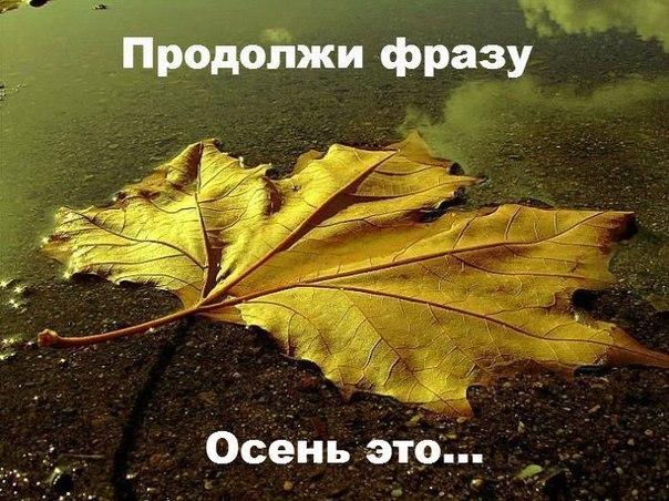 «Осень это…»: омичи дали около ста своих вариантов
