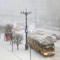 """Автобус """"Омск – Красное Знамя"""" переехал 74-летнюю женщину"""