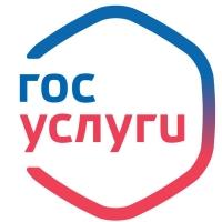Омский регион стал лидером по использованию госуслуг в Сибири