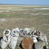 В Омской области берега озер Эбейты и Ульжай очистили от мусора