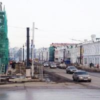 На Любинском проспекте в Омске появятся сибирские кедры