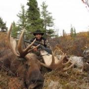 Омский охотник отработает добытого лося