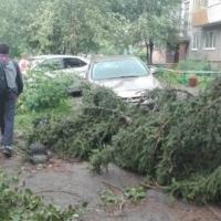 В Омске последствия микрошквала в Амурском поселке ликвидируют  только к 25 июля