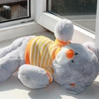 В Омске семилетняя девочка выпала из окна второго этажа