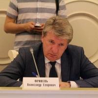 С поста замминистра строительства Омской области окончательно ушел Фрикель