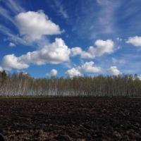 Земельный налог доначисляют за использование сельскохозземель не по назначению