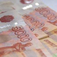Два предприятия депутата Заксобрания Головачева рискуют обанкротиться