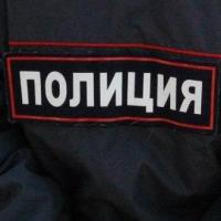 Две омички похитили у пенсионерки микроволновку и плед