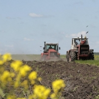 В Омской области посевная наращивает темпы